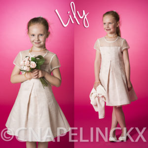 Lily -12 57