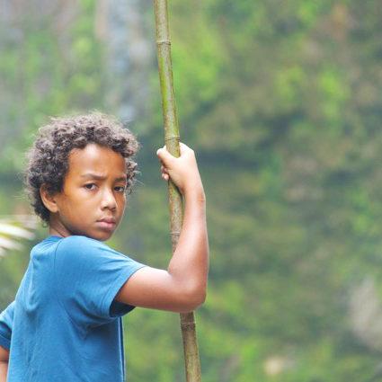Noah Jungle 1